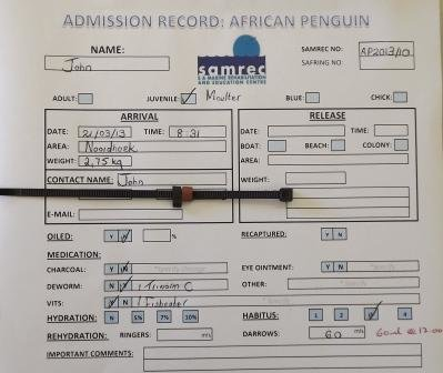 John African Penguin Records